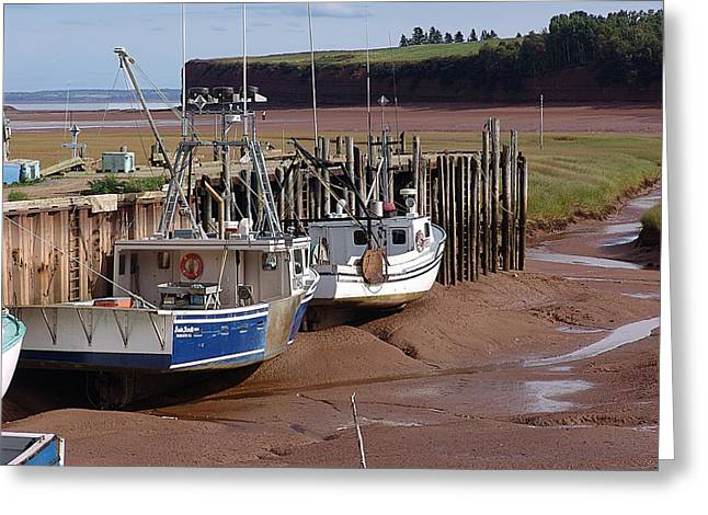 Minas Basin Greeting Cards - The Tide is OUT Greeting Card by Janet Ashworth