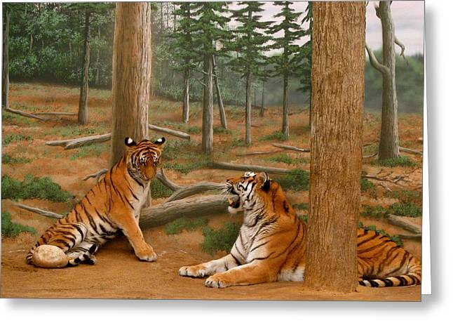 The Tigers Greeting Card by Art Spectrum
