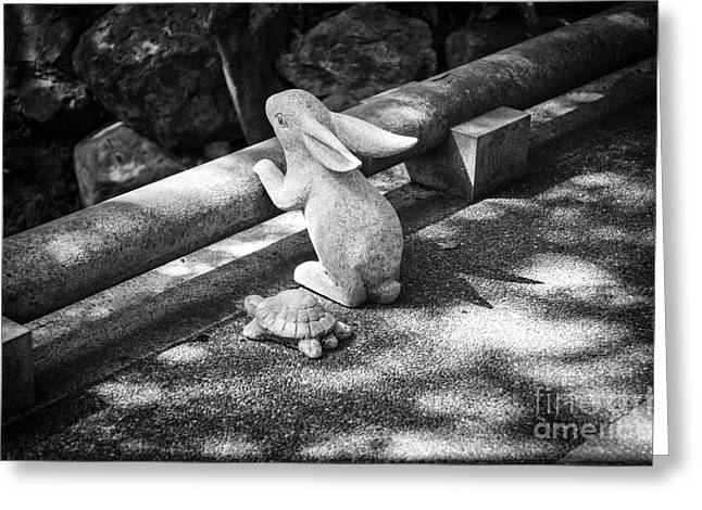 Fabled Greeting Cards - The Tortoise and the Hare Greeting Card by Dean Harte