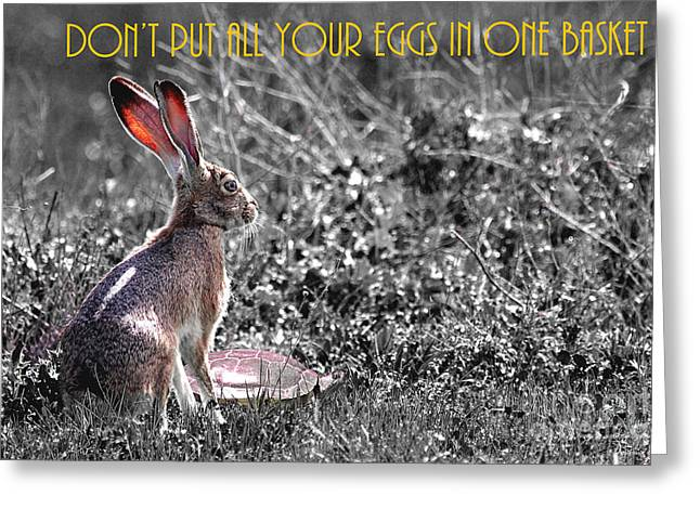 Nursery Rhyme Greeting Cards - The Tortoise and The Hare Dont Put All Your Eggs In One Basket 40D12379 bw Greeting Card by Wingsdomain Art and Photography