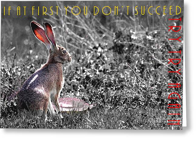 Nursery Rhyme Greeting Cards - The Tortoise and The Hare Try Try Again 40D12379 black and white Greeting Card by Wingsdomain Art and Photography