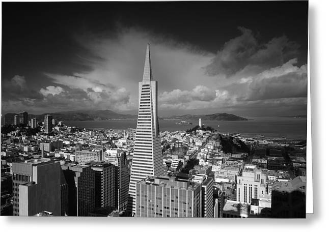Downtown San Francisco Greeting Cards - The TransAmerica Pyramid in San Francisco Greeting Card by Mountain Dreams