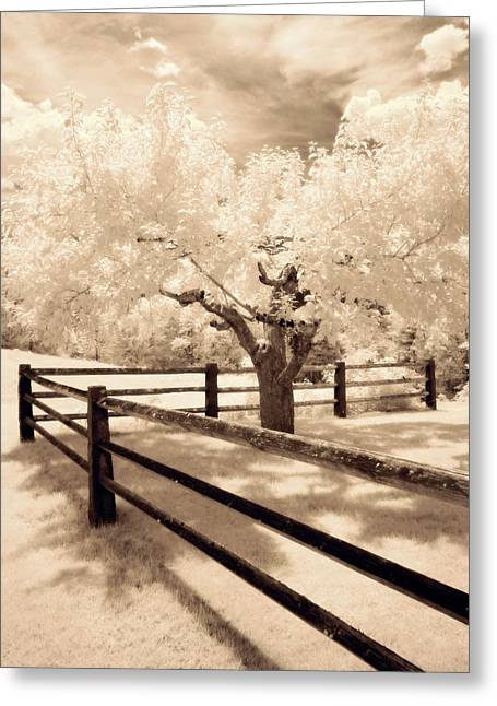Mystical Landscape Greeting Cards - The Tree by the Fence Greeting Card by Luke Moore