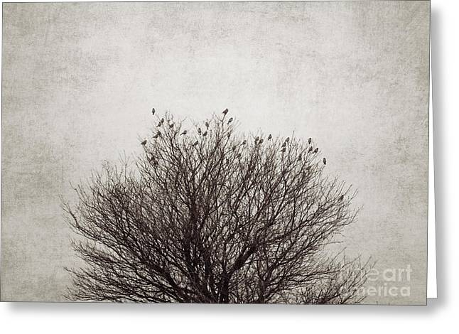 Sparrow Digital Art Greeting Cards - The tree Greeting Card by Diana Kraleva