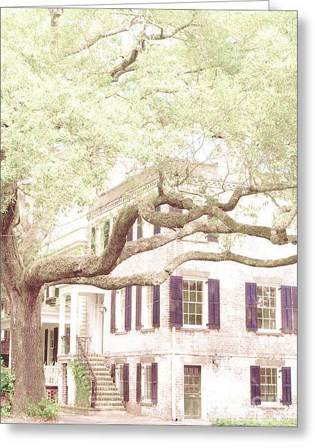 Ivy Corners Greeting Cards - The Tree in the Front Greeting Card by Margie Hurwich
