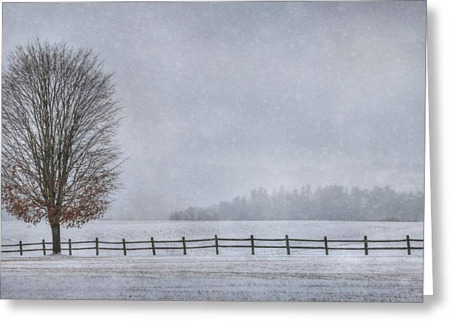 Wintry Digital Art Greeting Cards - The Tree Greeting Card by Lori Deiter