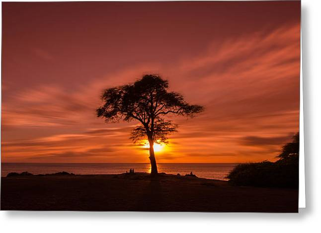 Top Seller Greeting Cards - The tree of life Greeting Card by Tin Lung Chao