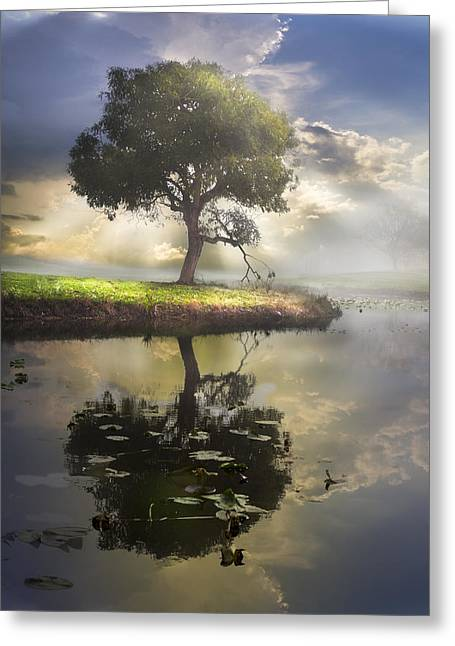 Foggy Beach Greeting Cards - The Tree of Living Waters Greeting Card by Debra and Dave Vanderlaan