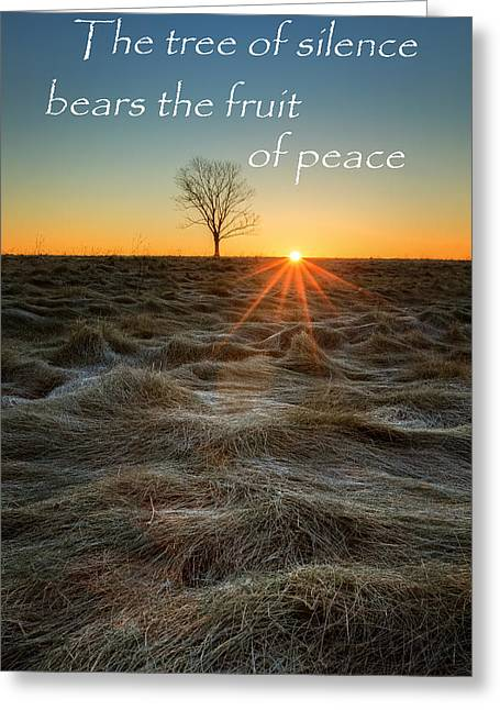 Light Rays Greeting Cards - The Tree of Silence Greeting Card by Bill  Wakeley