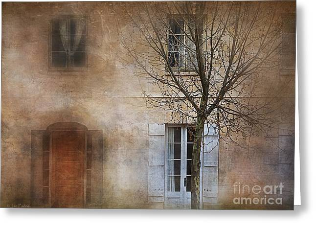 Kingston Greeting Cards - The tree out front Greeting Card by Jan Pudney