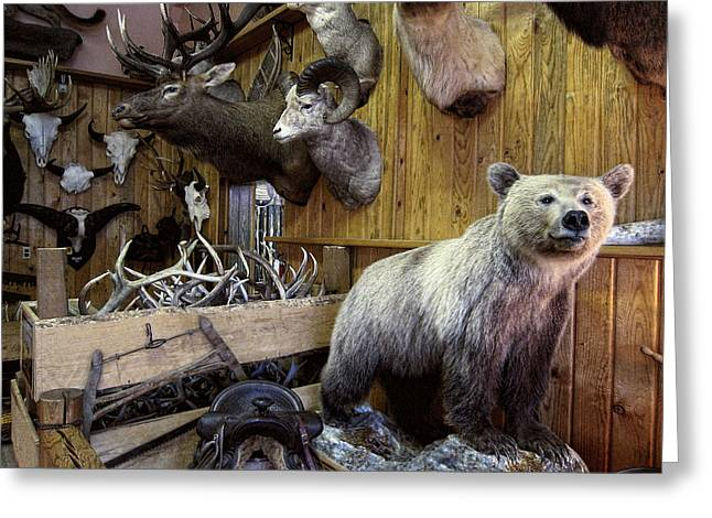 North Idaho Greeting Cards - The Trophy Room Greeting Card by Daniel Hagerman