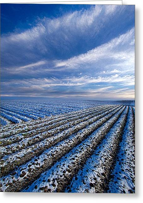 Severe Greeting Cards - The Truth About Tomorrow Greeting Card by Phil Koch