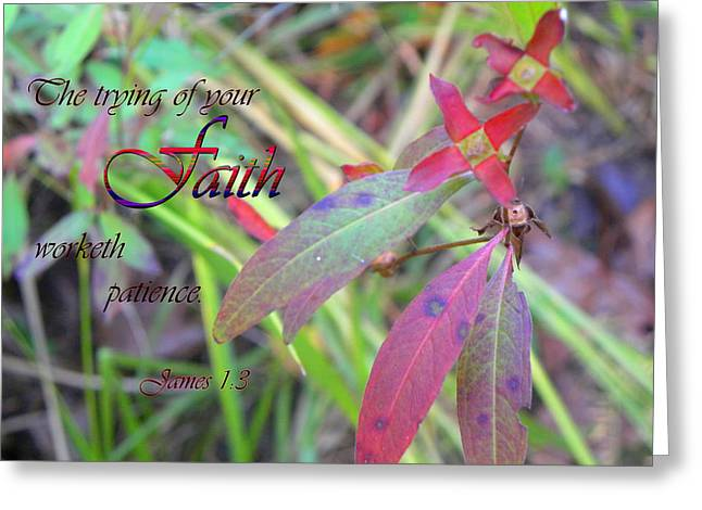 The Trying Of Faith Greeting Card by Larry Bishop