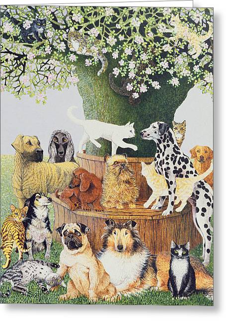 Collie Greeting Cards - The Trysting Tree Greeting Card by Pat Scott