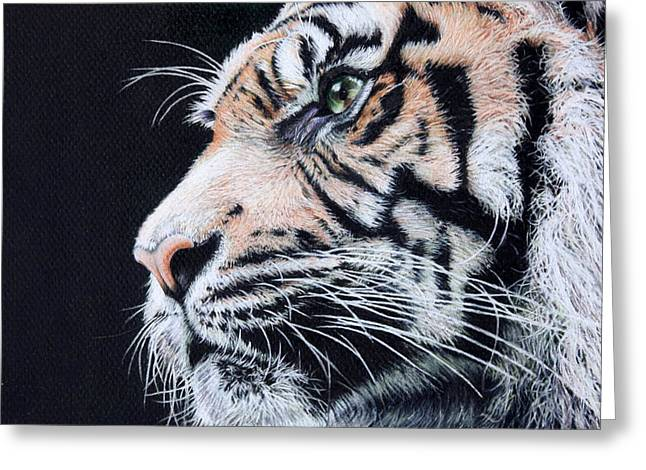 Bengal Drawings Greeting Cards - The Tyger Greeting Card by Kathryn Hansen