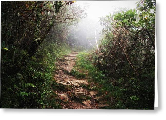 Inspriation Greeting Cards - Light the Path Greeting Card by Daniel  Gundlach