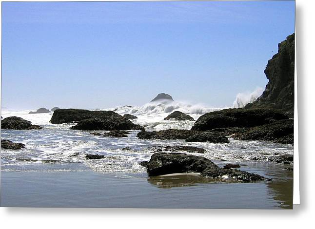 The Untamed Sea Greeting Card by Will Borden