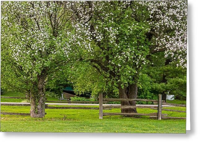 Split Rail Fence Greeting Cards - The Valley Awakens 2 Greeting Card by Steve Harrington