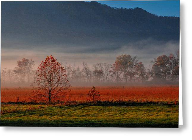 Dave Bosse Greeting Cards - The Valley Greeting Card by Dave Bosse