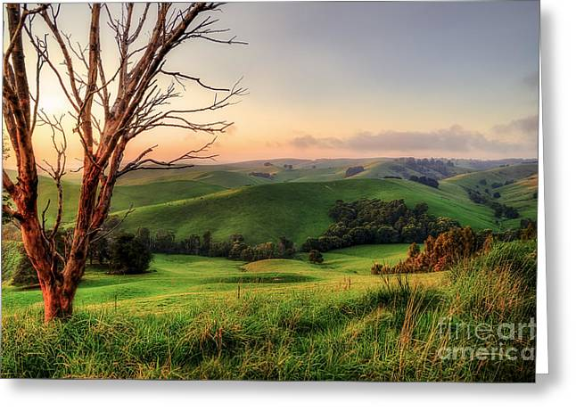 Farmers Field Greeting Cards - The Valley Greeting Card by Ray Warren