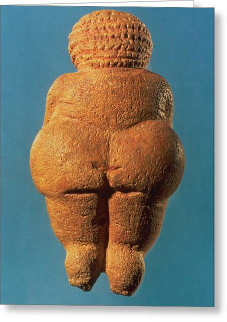 Overweight Greeting Cards - The Venus Of Willendorf, Rear View Of Female Figurine, Gravettian Culture, Upper Palaeolithic Greeting Card by .