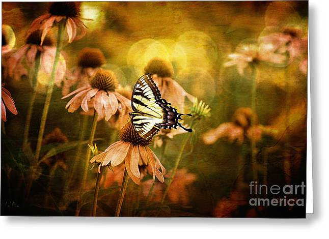 Swallowtail Greeting Cards - The Very Young At Heart Greeting Card by Lois Bryan