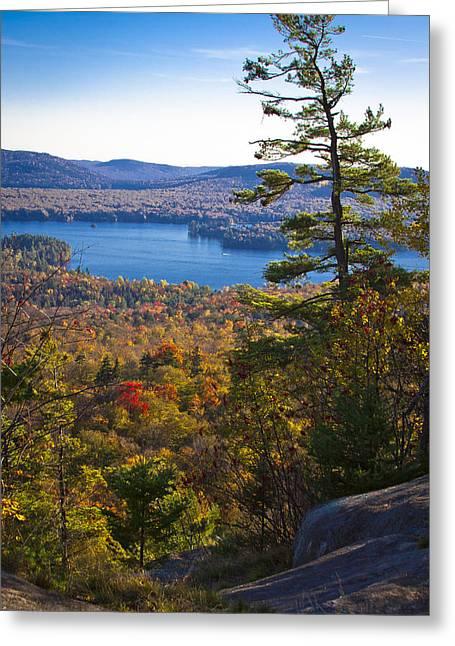 Fir Trees Greeting Cards - The View from Bald Mountain - Old Forge New York Greeting Card by David Patterson