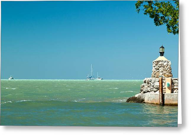 The View From The Mitchells Place In Islamorada Greeting Card by Michelle Wiarda