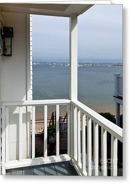 The View From The Porch Greeting Card by Michelle Wiarda