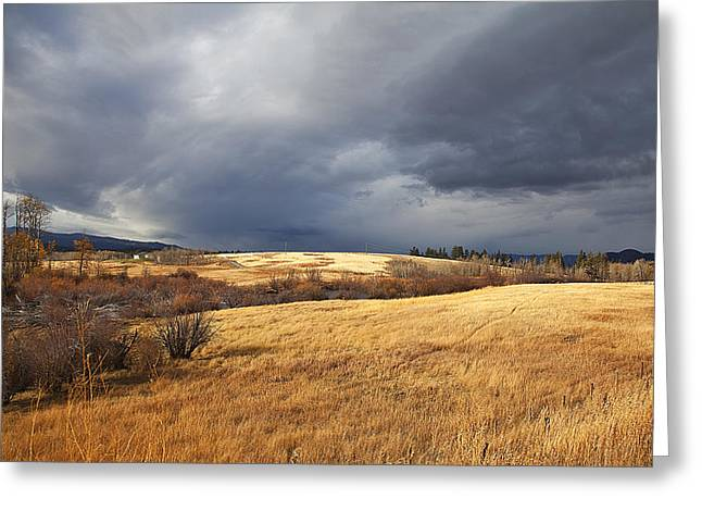 THE VIEW FROM THE SIDE OF THE ROAD Greeting Card by Theresa Tahara