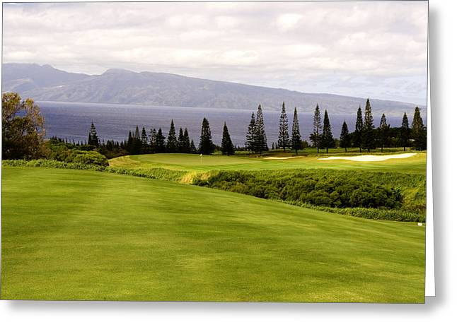 Golf Hole Greeting Cards - The View Greeting Card by Scott Pellegrin