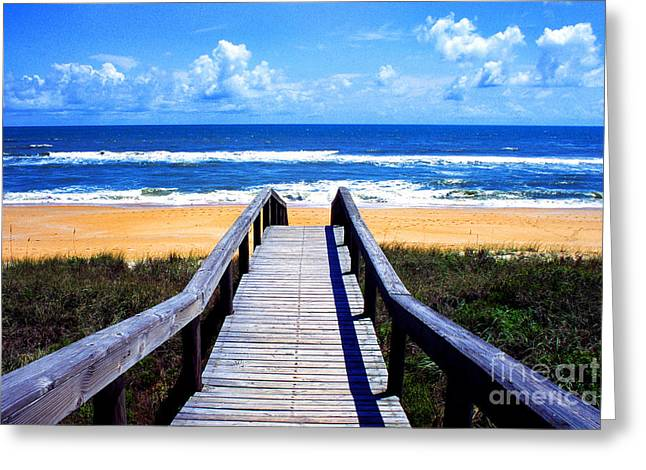 Flagler Greeting Cards - The View Greeting Card by Thomas R Fletcher
