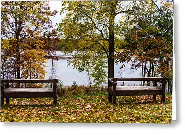 Mendon Greeting Cards - The View Greeting Card by William Norton