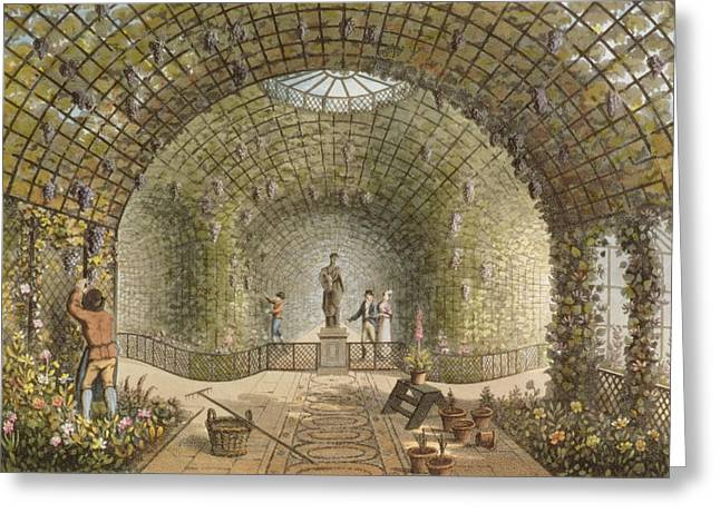Path Drawings Greeting Cards - The Vinery Greeting Card by Humphry Repton