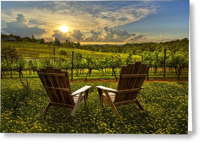 Blue Grapes Greeting Cards - The Vineyard   Greeting Card by Debra and Dave Vanderlaan