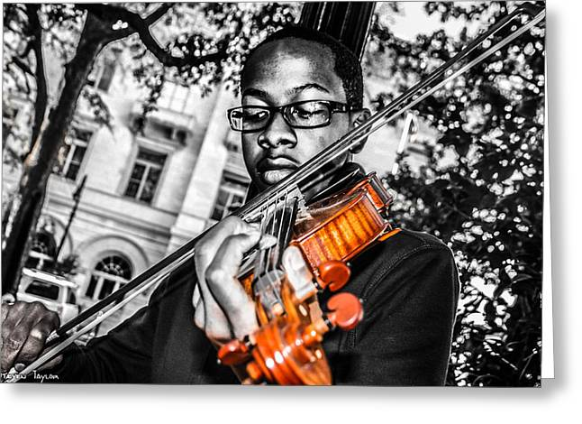 The Violinist  Greeting Card by Steven  Taylor