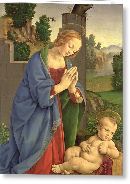 Veiled Photographs Greeting Cards - The Virgin Adoring The Child, 1490-1500 Oil On Wood Greeting Card by Lorenzo di Credi