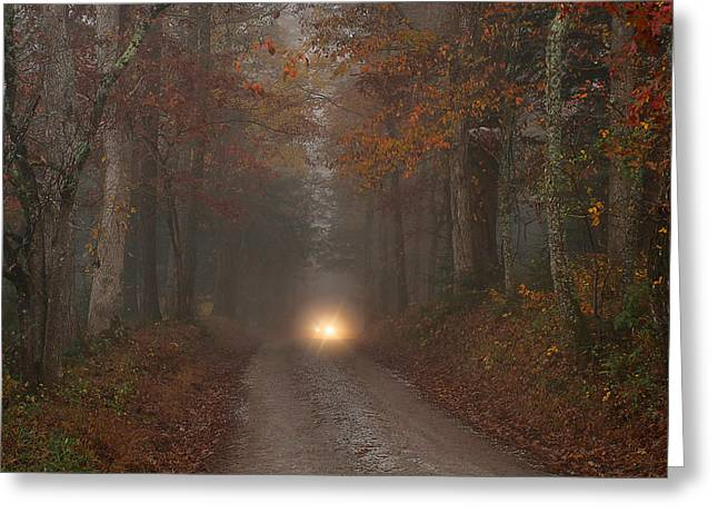 Mountain Road Greeting Cards - The Visitor Greeting Card by Rhonda McClure