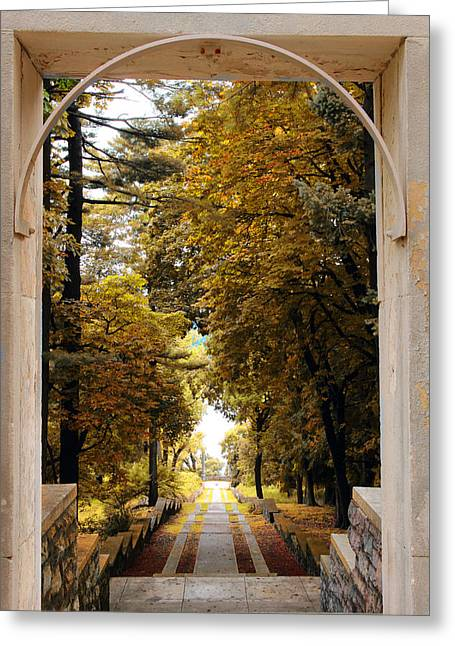 Entrance Greeting Cards - The Vista Steps Greeting Card by Jessica Jenney