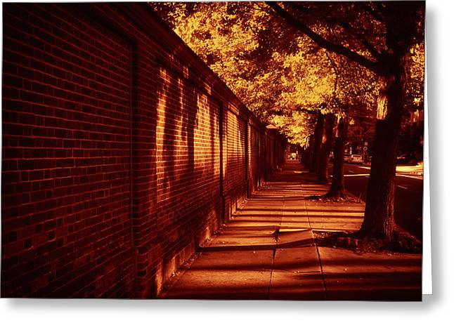 Shady Street Greeting Cards - The Walk Home Greeting Card by Mountain Dreams
