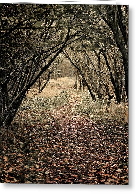 Footpath Greeting Cards - The Walk Greeting Card by Meirion Matthias