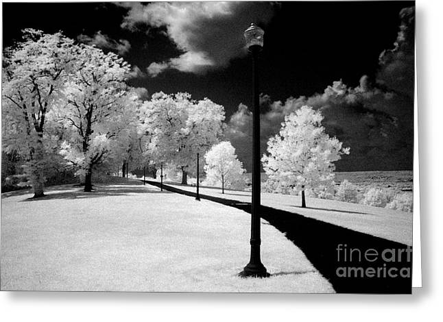Ir Greeting Cards - The Walkway Greeting Card by Paul W Faust -  Impressions of Light
