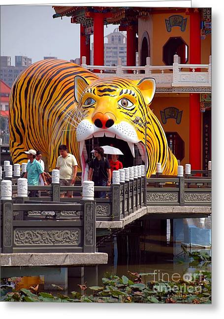 Chinese Tiger Greeting Cards - The Wannian Folklore Festival 2013 in Kaohsiung Taiwan Greeting Card by Yali Shi