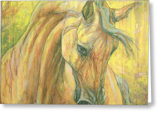 Bay Horse Greeting Cards - The warm-up Greeting Card by Silvana Gabudean