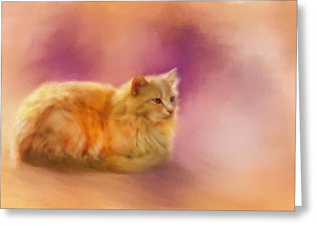 Orange Pastels Greeting Cards - The Warmth of a Perfect Day Greeting Card by Jai Johnson