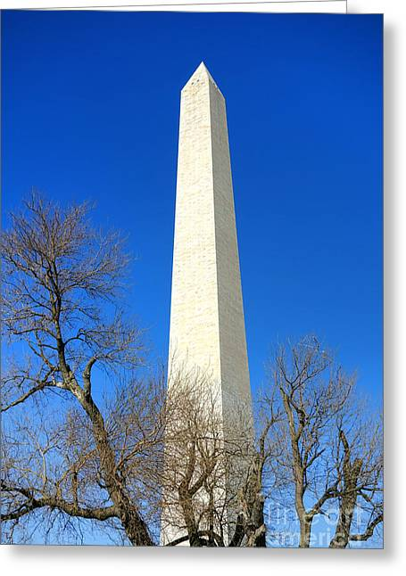 National Mall Greeting Cards - The Washington Monument and the Big Old Tree on the National Mall Greeting Card by Olivier Le Queinec