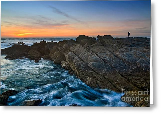 Observer Greeting Cards - The Watcher - Rocky Asilomar Beach in Monterey Bay. Greeting Card by Jamie Pham