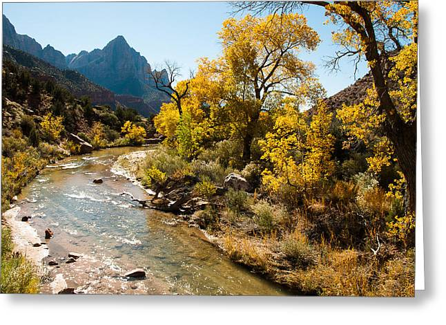 Geobob Greeting Cards - The Watchman and Virgin River Zion National Park Utah Greeting Card by Robert Ford
