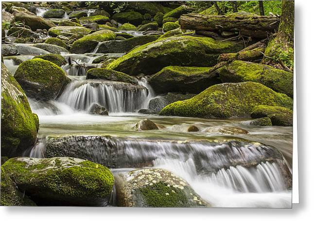 Smokey Mountains Greeting Cards - The Water Will Greeting Card by Jon Glaser
