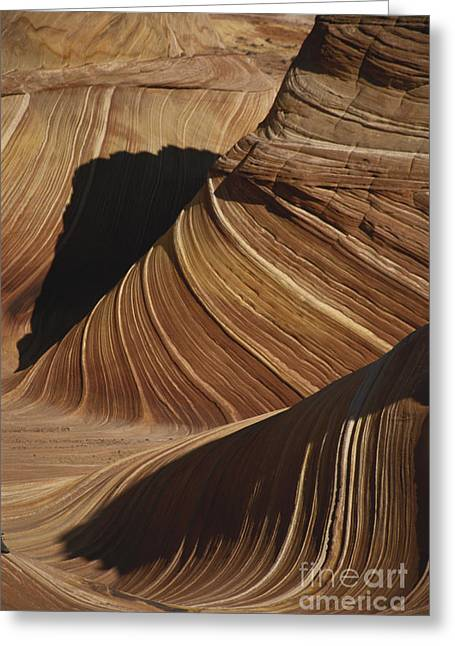 Lithified Greeting Cards - The Wave, Arizona Greeting Card by Mark Newman